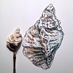 ∞Noel Badges Pugh∞ Sketchbook Inspiration, Art Sketchbook, Shell Drawing, Drawing Eyes, A Level Art, Sea Art, Cool Artwork, Traditional Art, Art Inspo