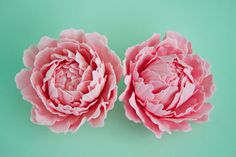 How to make a gum paste peony (part 1) {CakeJournal} -- *breathtaking!!* <3 <3 <3