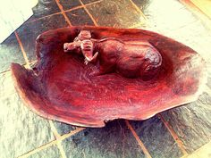 Hand carved Ironwood bowl with Cape buffalo detail. (L×56/ W×33/ H×12cm).