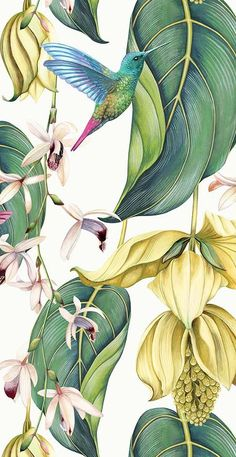 Flower Phone Wallpaper, Home Wallpaper, Wallpaper Backgrounds, Wallpaper Designs, Floral Wallpapers, Painting Wallpaper, Design Textile, Design Floral, Plant Illustration