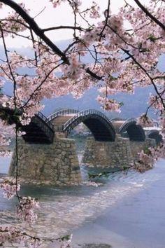 Ponte Kintai,  Iwakuni, Japão