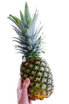 A quick photo tutorial on how to cut up a pineapple -- quick, easy, and SO tasty! Cut Pineapple, Pineapple Slices, Cooking Tips, Cooking Recipes, Easy Recipes, Eat Fruit, Fruit Dishes, Fruit Snacks, Food Handling