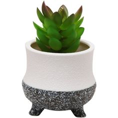 Modern Decorative Small Ceramic Succulent Planter Flower Pot Desktop... ($9.99) ❤ liked on Polyvore featuring home, home decor, office accessories, modern office accessories, modern planters, modern desk organizer, ceramic pencil holder and succulent planter
