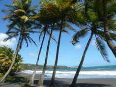 Grande Anse, Trois Rivière (Guadeloupe)