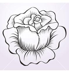Rose Drawings | Rose drawing vector 584065 - by MarishaJ