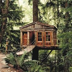 Taking backyard play to new heights, these tree houses just might inspire you to create one to delight the kids—or your inner child.