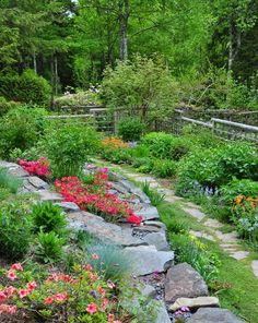 Three Dogs in a Garden: The Garden of Donna & Duff Evers, Part 1: The Lakefront Terrace Garden