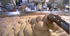 Depois de saber como são produzidas as salsichas, você nunca mais vai querer comê-las!