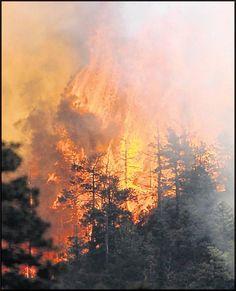Colorado Springs, Waldo Canyon Fire