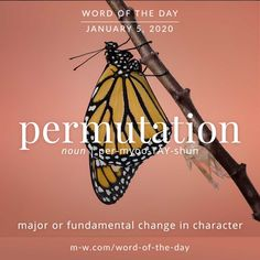 English Word of the Day: Permutation Unusual Words, Weird Words, Rare Words, Unique Words, Great Words, New Words, Beautiful Words, Good Vocabulary, English Vocabulary Words