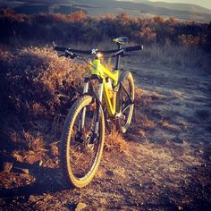 Shot by Brandon Wheeler while testing the 2015 Silverback Slider 1 trail bike on Hoogekraal. Bike Trails, Mtb, Sliders, Mountain Biking, Bicycle, Motorcycle, Vehicles, Travel, Products