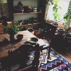 warm materials, greenery in the home anne_parker