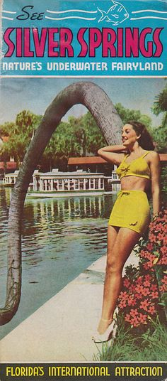 Vintage 50s Travel Brochure Silver Springs Florida