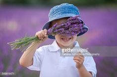 Cute boy, holding lavender in lavender field, hiding behind it and smiling at camera.
