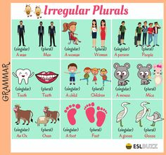 Although most nouns have plurals formed according to regular rules, some nouns have unusual, or irregular plurals...