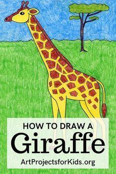 Learn how to draw a Giraffe with an easy step-by-step PDF tutorial. #howtodraw #tutorial #drawing #drawingtutorial #arttutorial #artprojectsforkids #howtodrawforkids #giraffe Easy Art Projects, Drawing Projects, Drawing Lessons, Projects For Kids, Art Lessons, Project Ideas, Easy Giraffe Drawing, How To Draw Giraffe, Giraffe Species
