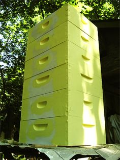 Bee hives being painted yellow at Brookfield Farm Bees And Honey, Maple Falls, WA