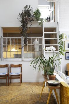 reclaimed windows, plants, floors.