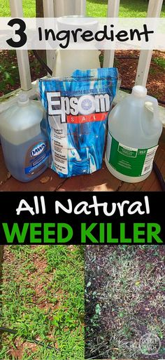 This simple recipe for natural weed killer not only saved my back but cost way less than the toxic brands at the store! My 5 acres is now manageable again!  #gardeningideas