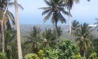 Dijual Tanah Di Suraberata Dekat Balian Beach
