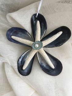 Mussel star ornament