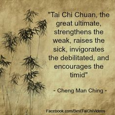 Martial arts quotes Tai Chi Chuan