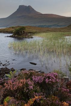 Scotland Stac Pollaidh & Loch Lurgainn, Wester Ross by Douglas Griffin Wester Ross, England And Scotland, Scottish Highlands, What A Wonderful World, Adventure Is Out There, British Isles, The Great Outdoors, Wonders Of The World, Places To See