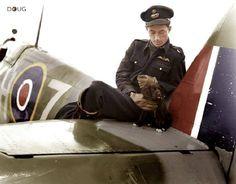 F/O William T Lane - Spitfire Mk.IX - RCAF 403 Squadron, Kenley - May '43 ( KIA 15/5/43 aged 21)