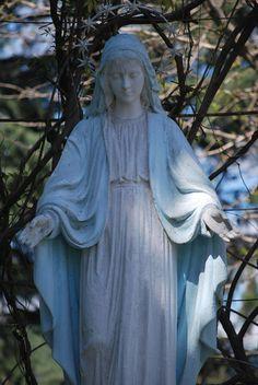Estatua de la Virgen en nuestros jardines - Fotos: Andrea del Valle