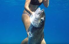 Biggest thing Spearfishing in Kauai is respect, respect local fishermen, dive spots, and fish regulations and you well be welcomed with open arms. Best Scuba Diving, Marine Conservation, Open Arms, Kauai Hawaii, Respect, Fish, Ichthys