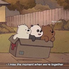 Cute Panda Wallpaper, Bear Wallpaper, Mood Wallpaper, Cute Disney Wallpaper, Cute Cartoon Wallpapers, Ice Bear We Bare Bears, We Are Bears, We Bear, Bear Meme