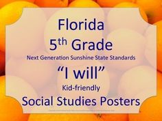 Florida 5th Fifth Grade SS Social Studies NGSSS I WILL Standards Posters