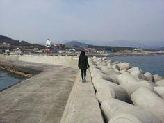 2012년2월 경상북도 포항
