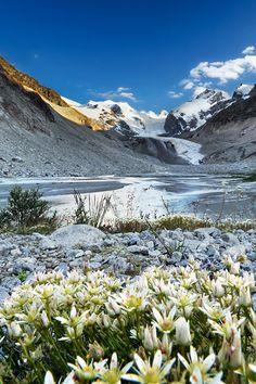Vadret da Morteratsch/Morteratsch Glacier, Canton of Graubünden, Switzerland