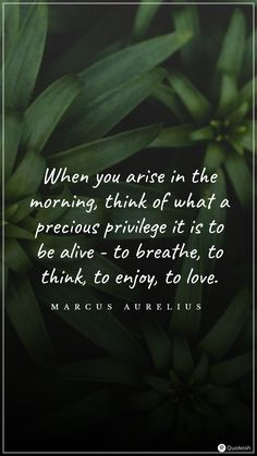 When you arise in the morning, think of what a precious privilege it is to be alive - to breathe, to think, to enjoy, to love. - Marcus Aurelius New Day Quotes, Everyday Quotes, Quote Of The Day, Today's A New Day, Brand New Day, Sing To Me, New Thought, Secret To Success, Grateful Heart