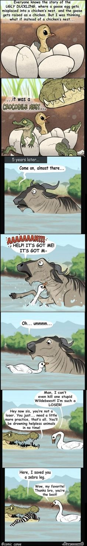 68 Funny Memes Of The Day To Make Your Laugh Bild # 68 Lustige Meme des Tages zum Lachen bringen