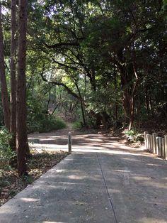 伊邪那岐神社前 2014.10.10