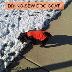 No sew dog coat tutorial