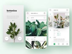 hey, guys! here is botanica – a plant database i've been working on. hope you like it so have a great day, guys! and don't forget to water your plants 🌱