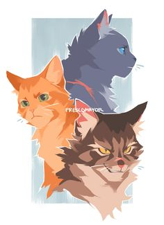 These Four Cat Warrior Personality Character and Their Traits That You May Have One - Wings Bird Pro Warrior Cats Series, Warrior Cats Books, Warrior Cats Fan Art, Warriors Erin Hunter, Warrior Cat Drawings, Gato Gif, Cat Reference, Mini Comic, Forest Cat