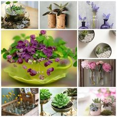 You may try to add living beauty to the inside of your house by growing houseplants, or arranging some fresh cut flowers from your own backyard, but cannot find right pot or vase for them at hand, check out these creative ideas. Indoor Tabletop Water Garden (BY: radmegan) Have a sequin dress …