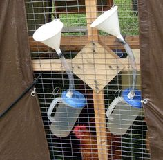 Easy-fill chicken waterer - for those who have chickens! I used to have a farm with a bunch of chickens, lol