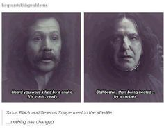 Sirius and Snape in the afterlife. Sass.