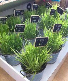 Spring Freshness: 45 Wheatgrass Wedding Ideas | HappyWedd.com