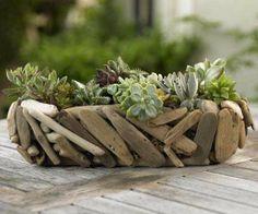 Driftwood Succulent Garden from VivaTerra