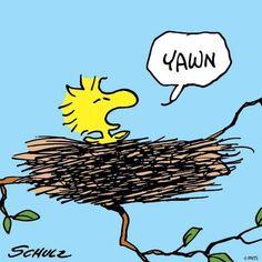 Peanuts Cartoon, Peanuts Snoopy, Peanuts Comics, Snoopy Love, Snoopy And Woodstock, Snoopy Wallpaper, Peanuts Characters, Cartoon Characters, Joe Cool