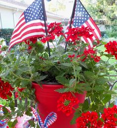 Patriotic picnic - food, decorations, favors and more