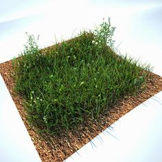 C4D free Grass kit. Also for Vray
