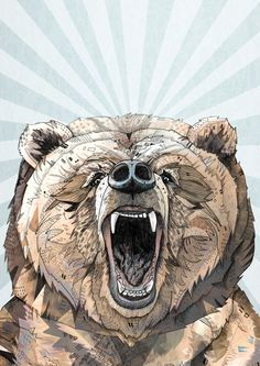 Symmetrical layout, background focuses the eye towards centre and brings piece together.  // ● Grizzly ● - Sandra Dieckmann | Illustration