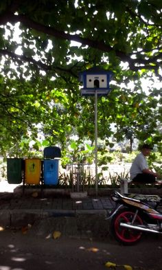 Birdhouse in the CBD of Jakarta
